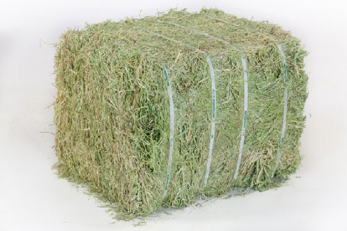 Double Compressed Full Bale